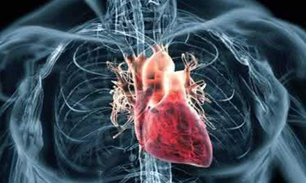 Не только для мужчин: от апноэ сна и болезней сердца страдают и женщины