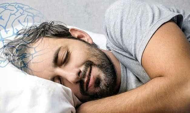 Найден ген сна